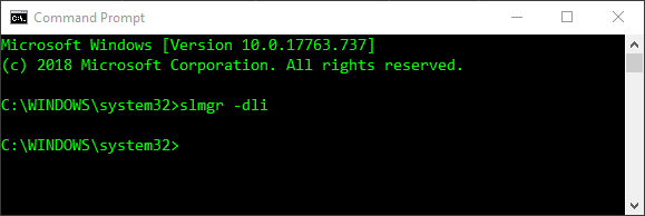 Windows command line command to check license type